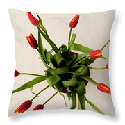 Spring Thaw Throw Pillow by Luke Moore