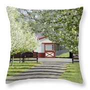 Spring Time At The Farm Throw Pillow
