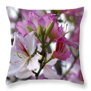 Spring Tree Blossoms Throw Pillow
