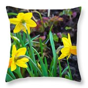 Spring Trinity Throw Pillow
