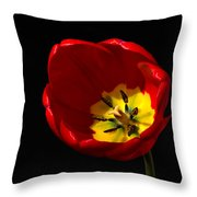 Spring Tulip 2 Throw Pillow