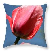 Spring Tulip Blues Throw Pillow