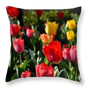 Spring Tulip Garden Throw Pillow