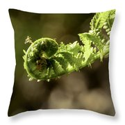 Spring Unfurled Fiddlehead Throw Pillow