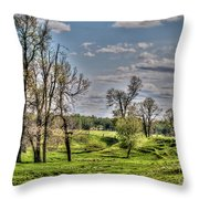 Spring Valley Throw Pillow