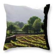 Spring Vines In Provence Throw Pillow