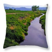 Spring Walk Throw Pillow