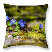 Spring Wild Flowers Throw Pillow