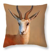 Springbok  Portrait Throw Pillow by Johan Swanepoel