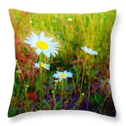 Springing Daisy's Throw Pillow