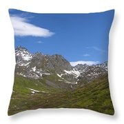 Springs Arrival Throw Pillow