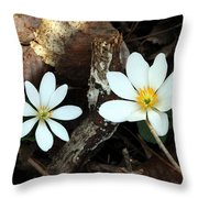 Spring's Bloom Throw Pillow