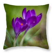 Springs Blossoms Throw Pillow