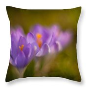 Springs Delicate Richness Throw Pillow by Mike Reid