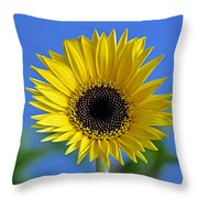 Spring's Promise Throw Pillow