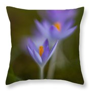 Springs Soft Procession Throw Pillow by Mike Reid