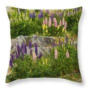 Springtime At Lake Tekapo Throw Pillow