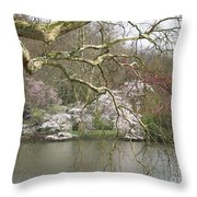 Springtime At The Pond Throw Pillow