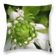 Springtime Bud Throw Pillow