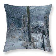 Springtime Icestorm Throw Pillow