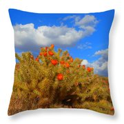 Springtime In Arizona Throw Pillow