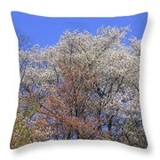 Springtime In Great Balsam Mountains Throw Pillow