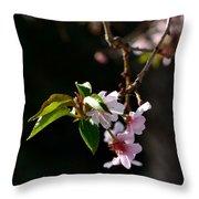 Springtime In Napa Ca Throw Pillow