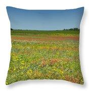 Springtime In Texas 2 Throw Pillow