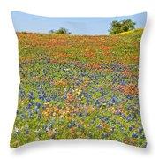 Springtime In Texas 5 Throw Pillow