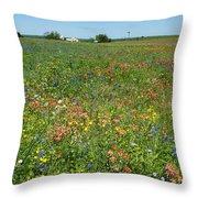 Springtime In Texas 6 Throw Pillow