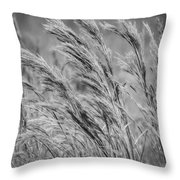 Springtime In The Field - Bw Throw Pillow
