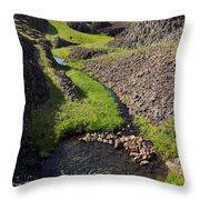 Springtime In The Foothills Throw Pillow