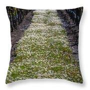 Springtime In The Vineyards Throw Pillow