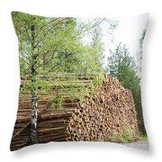 Springtime Logs Throw Pillow