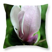 Springtime Love Throw Pillow