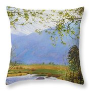 Springtime Moraine Park Throw Pillow