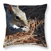 Springtime Nutcracker Throw Pillow