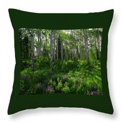 Springtime On The Grand Mesa Throw Pillow