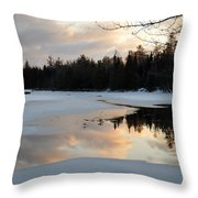 Springtime Reflection Throw Pillow