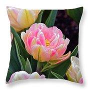 Springtime Sprites -- Parrot Tulips Throw Pillow