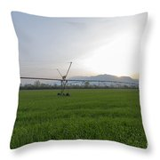 Sprinklers On A Green Field Throw Pillow
