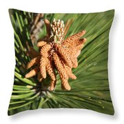 Sprintime Pine Throw Pillow
