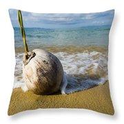 Sprouting Coconut Washed Up On Beach Throw Pillow by Naki Kouyioumtzis