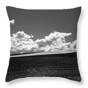 Sprouting Field Of Sunflowers And Field Of Rape At Back. Auvergne. France Throw Pillow