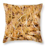 Sprouting Russian Banana Fingerling Seed Potatoes Throw Pillow