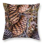 Spruce Cones Throw Pillow