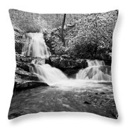Spruce Flats Falls Throw Pillow
