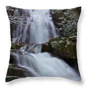Spruce Flats Falls IIi Throw Pillow