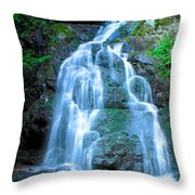 Spruce Flats Orchestra Throw Pillow