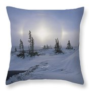 Spruce Forest With Sundogs Hudson Bay Throw Pillow